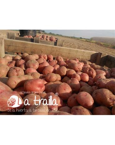 Caja de Patatas