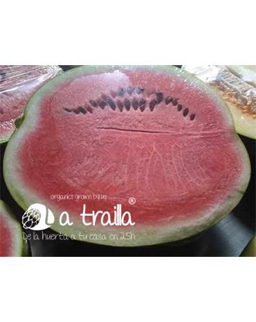 Caja de Melones y Sandías